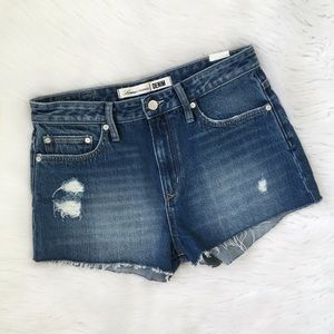 Lovers + Friends High Waisted Jack Denim Shorts